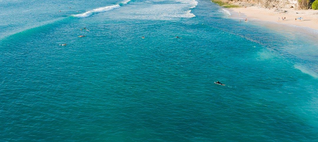 dreamland beginner surf